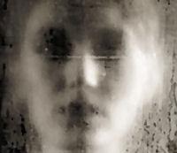 apparizioni : fantasmi , spettri e medium